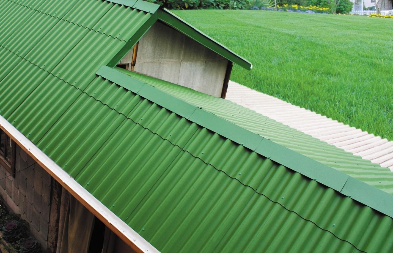 Фото зеленой крыши