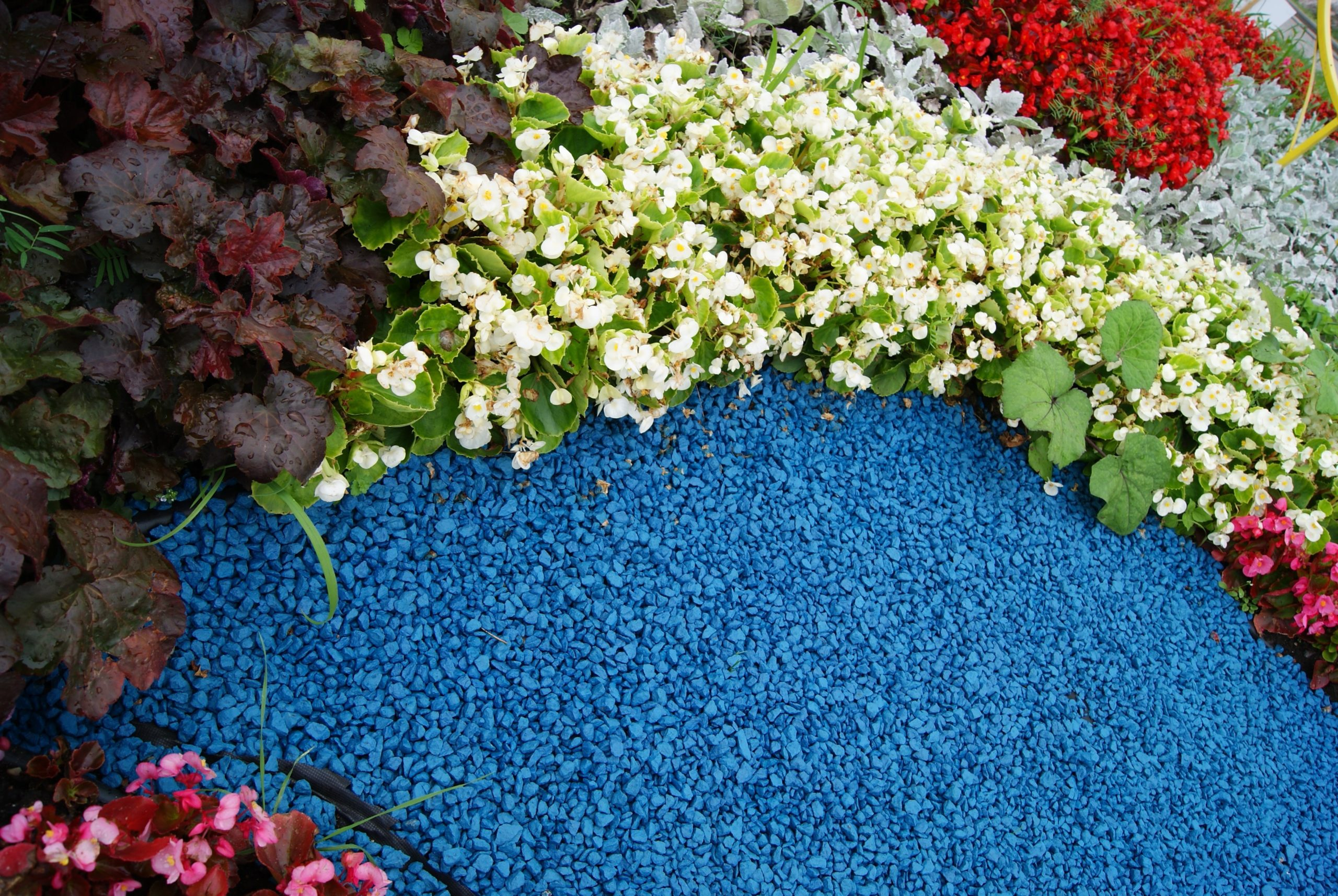 Цветной щебень в саду