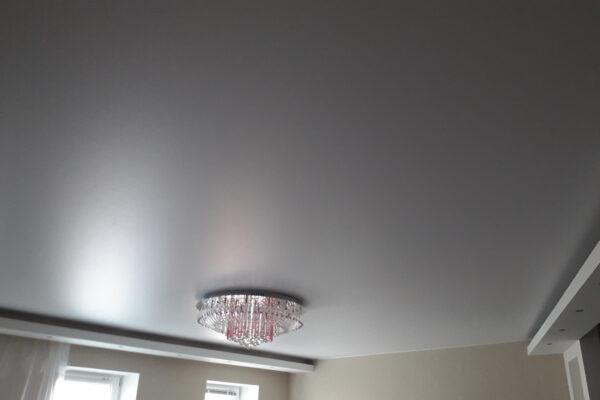 Потолок цвета металлик