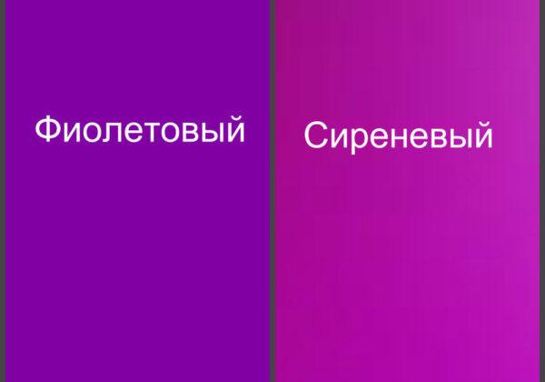Сравнение цветов
